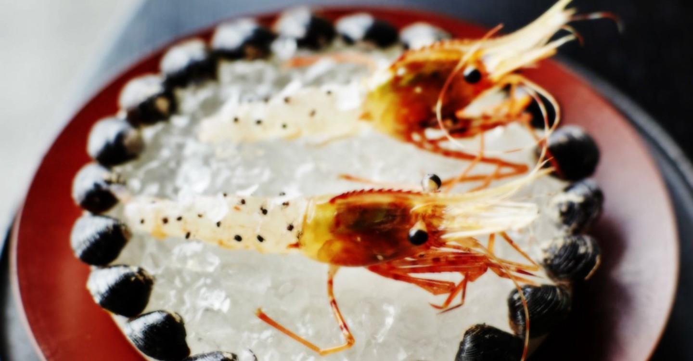 Ants on a Shrimp