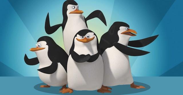 Los Pinguinos De Madagascar Ver La Serie Online