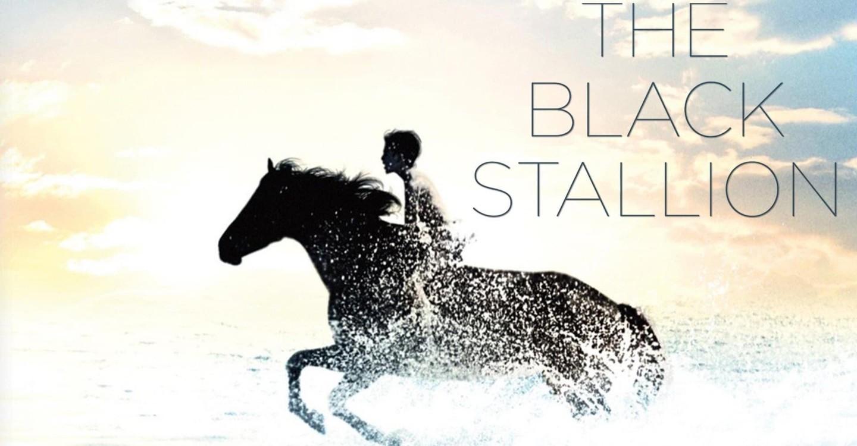 Der schwarze Hengst