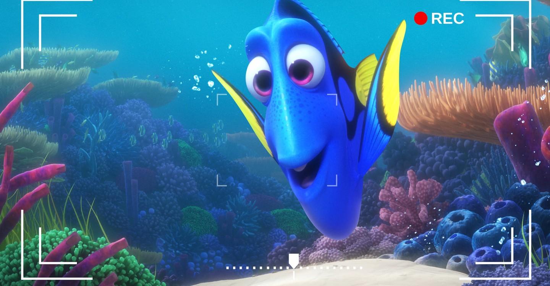 La cámara del arrecife de Dory