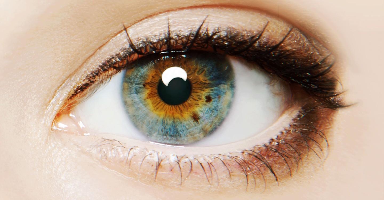 A szem tükrében
