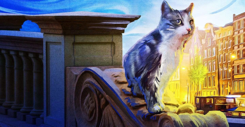 Katzenliebe: Eine Hommage an Katzen