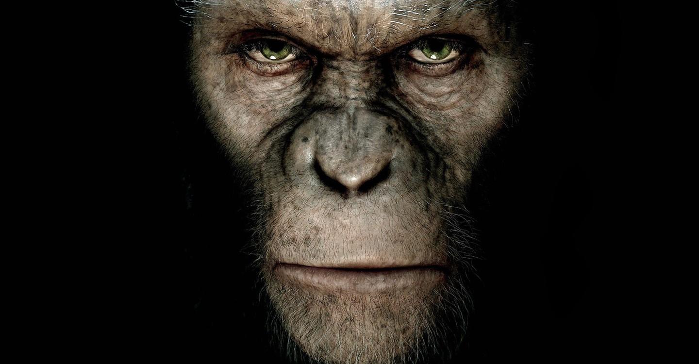 Planet der Affen - Prevolution