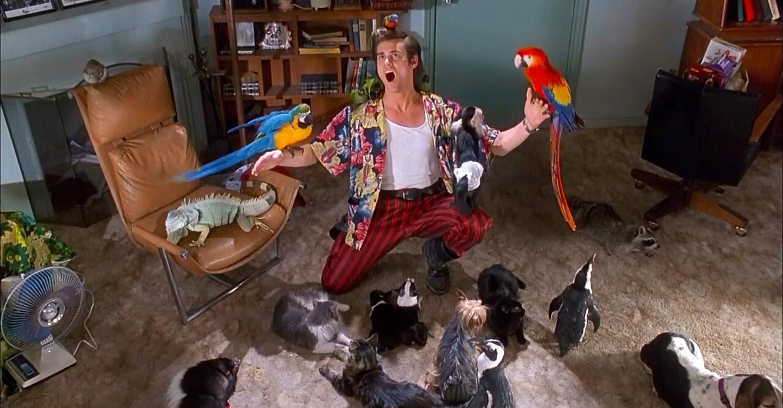 Ace Ventura: Zvířecí detektiv