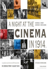 A Night at the Cinema in 1914