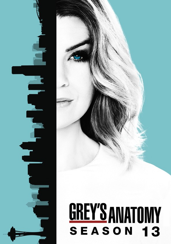 Grey's Anatomy Season 13 poster