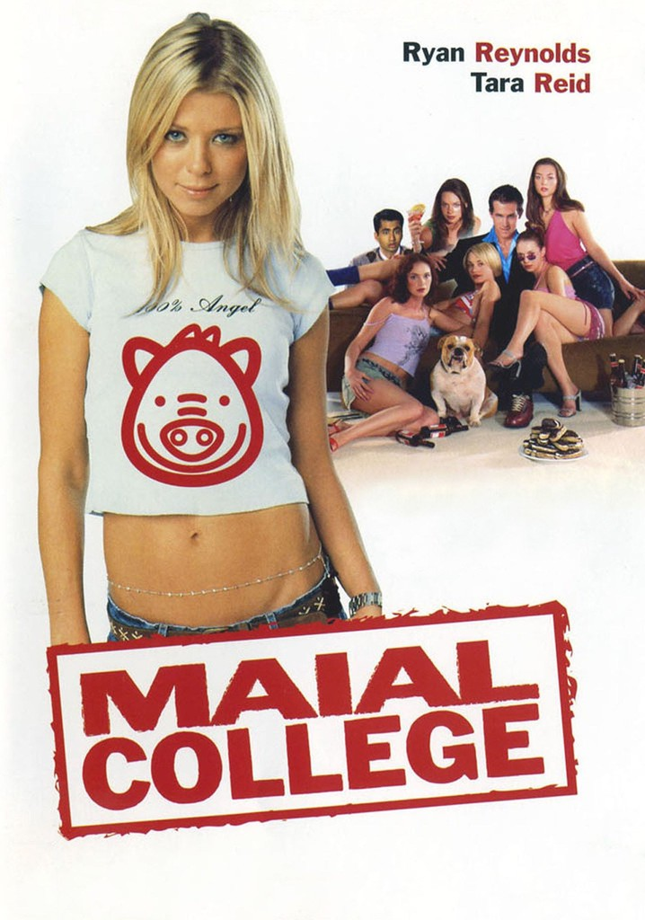 Maial college