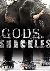 Gods in Shackles