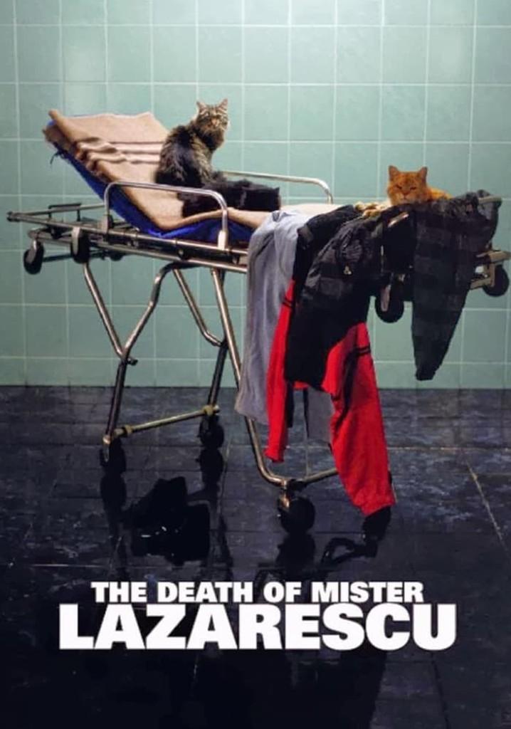 Der Tod des Herrn Lazarescu