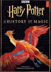 Harry Potter: una historia de magia