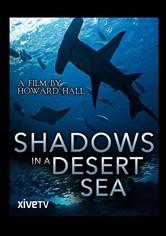 Shadows in a Desert Sea