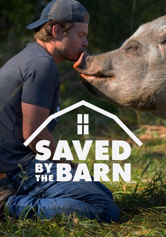 Saved By The Barn