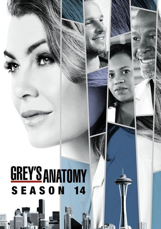 Season 14