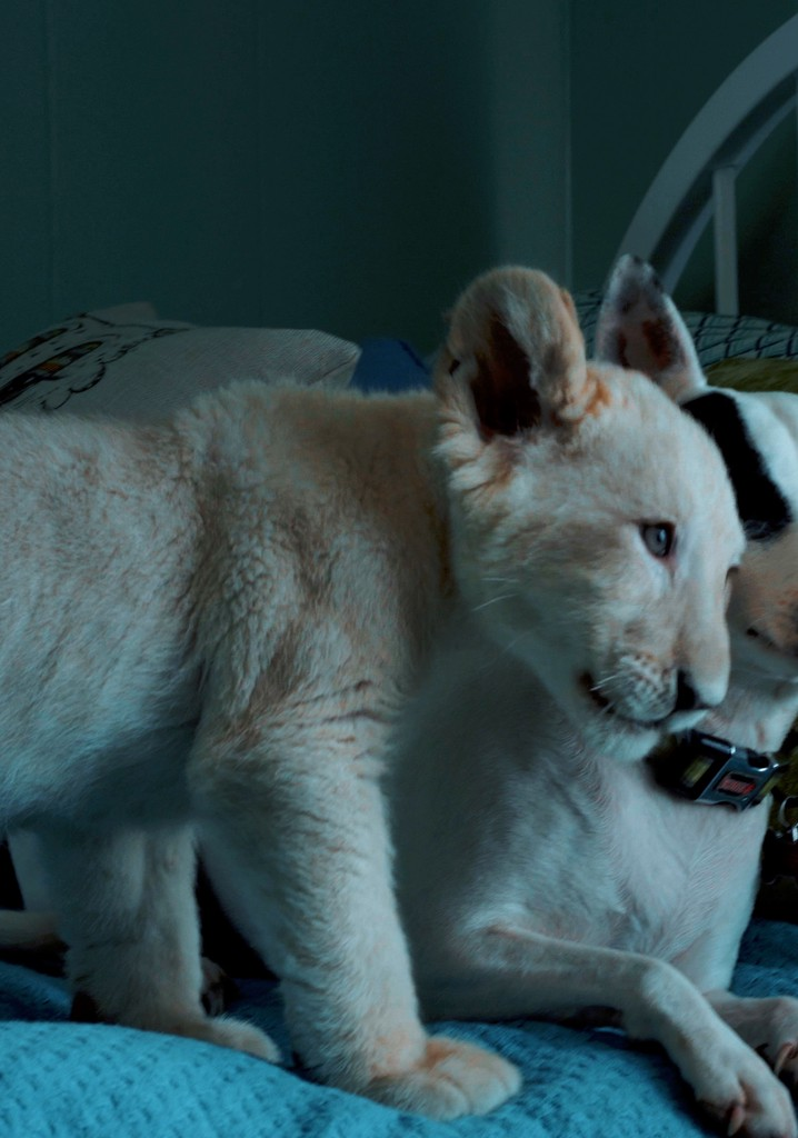 Lena and Snowball