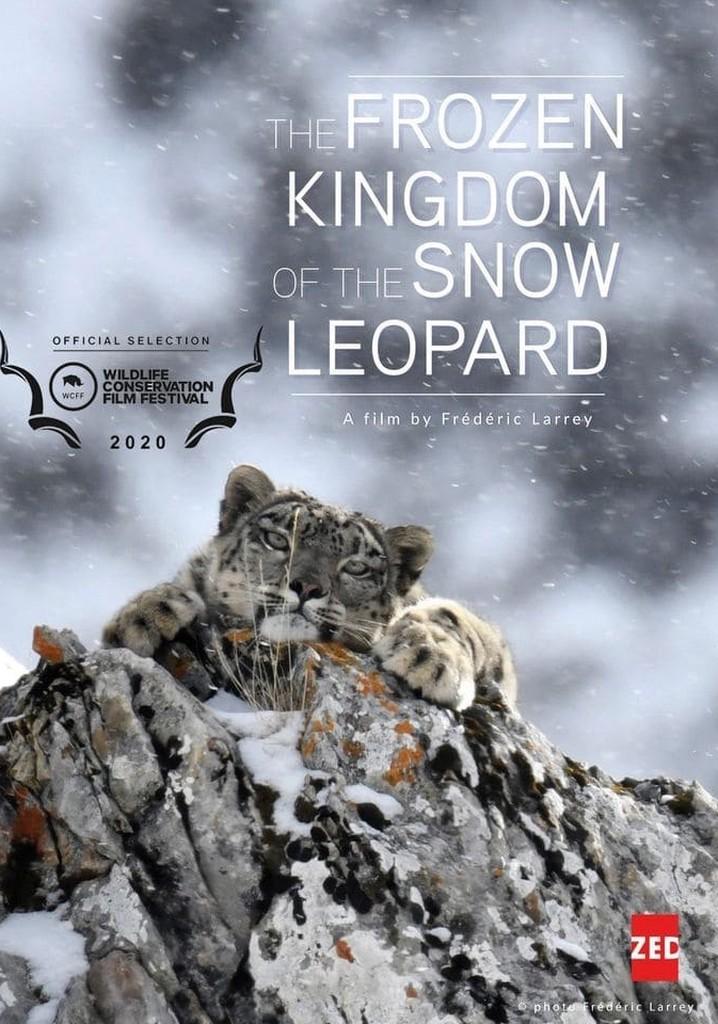 Frozen Kingdom of The Snow Leopard
