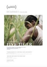 Five Tiger