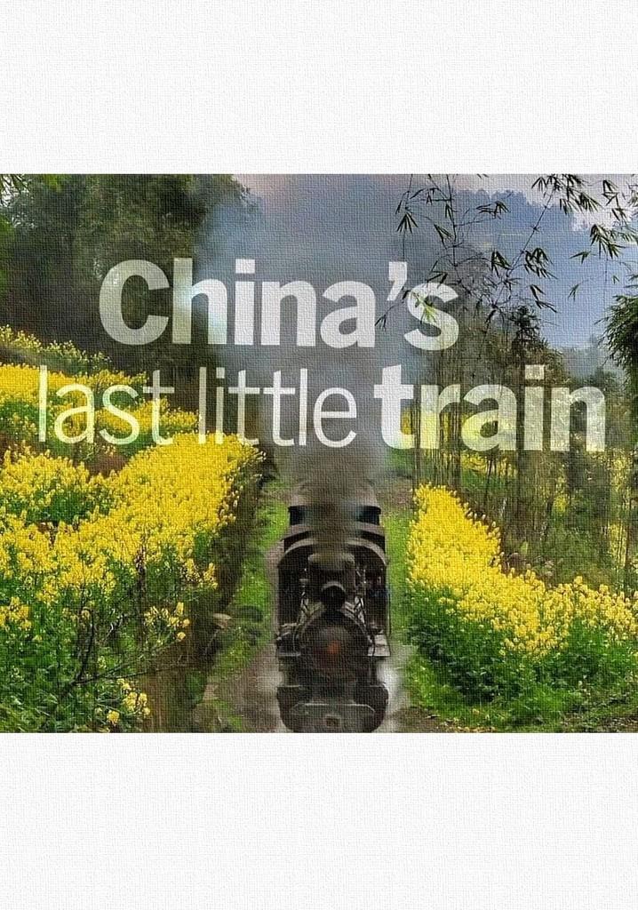 China's Last Little Train