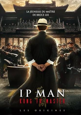 Ip Man Kung Fu Master : Les Origines
