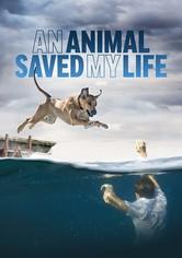 An Animal Saved My Life