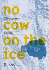 Ingen ko på isen