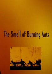 The Smell of Burning Ants